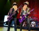 Billy Gibbons im
