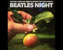 beatles-night